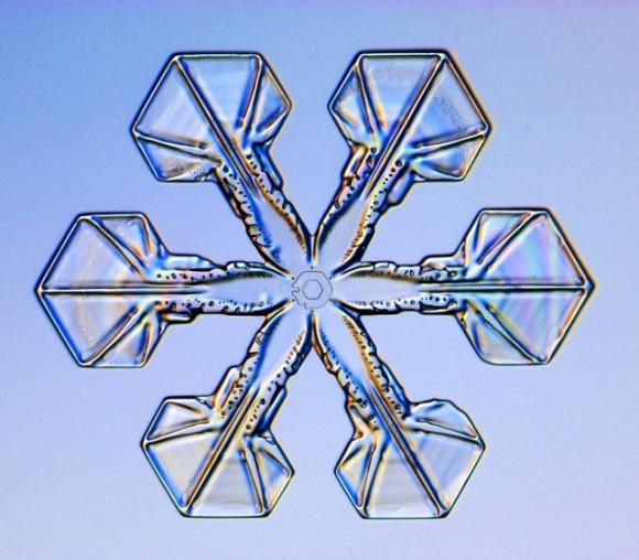 Schneekristall – Unterteiltes Plättchen